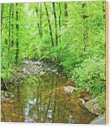 Georgia Stream In Summer Wood Print