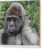 Gorilla My Dreams Wood Print