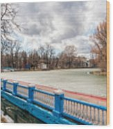 Gorky Park In Winter Wood Print