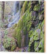 Gorman Falls At Colorado State Park II - San Saba Texas Hill Country Wood Print