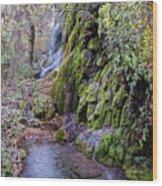 Gorman Falls At Colorado State Park - San Saba Texas Hill Country Wood Print