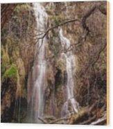 Gorman Falls Wood Print