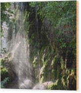 Gormon Falls Colorado Bend State Park.  Wood Print
