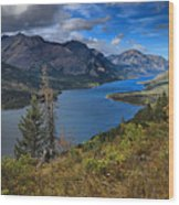 Goat Haunt Pine Tree Panorama Wood Print