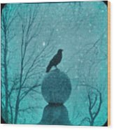 Goth Snow Globe Wood Print