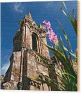 Gothic Chapel Wood Print