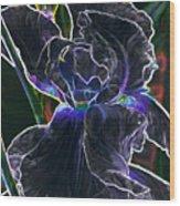 Gothic Iris Wood Print