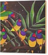 Gouldian Finch Rainbow Wood Print