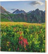 Governor's Basin In Bloom Wood Print