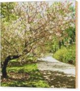 Grace Of Magnolia Wood Print