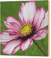 Graceful Bloom Wood Print