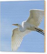 Graceful Flight Wood Print