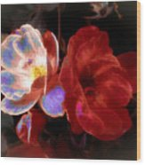 Graceful Glow Wood Print