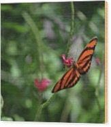 Graceful Oak Tiger Butterfly Around Pink Flowers Wood Print