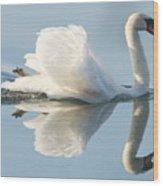 Graceful Swan Wood Print