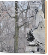 Graceland Cemetery Wood Print