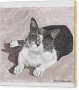 Gracie Jacks Cat Now Wood Print