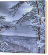 Gracious Winter Wood Print