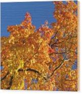 Gradient Autumn Tree Wood Print