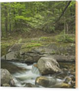 Grafton Notch Maine Wood Print