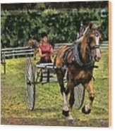 Grahamsville Ny Fair Wood Print