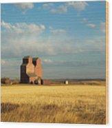 Grain Elevators Stand In A Prairie Wood Print