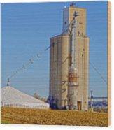 Grain Storage Hdr No1 Wood Print