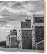 Grainery Row Wood Print