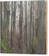 Grand Bay Wood Print
