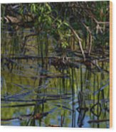 Grand Beach Marsh Wood Print