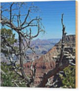 Grand Canyon 13 Wood Print