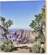 Grand Canyon 2270 Wood Print