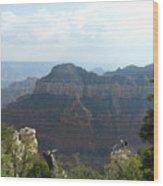 Grand Canyon 8 Wood Print