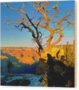 Grand Canyon National Park Winter Sunrise On South Rim Wood Print