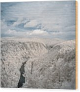 Grand Canyon Of Pa In Infrared Wood Print