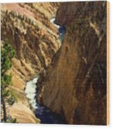 Grand Canyon Of The Yellowstone 2 Wood Print