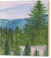 Grand Canyon Of West Virginia Wood Print