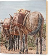 Grand Canyon Pack Mules Wood Print