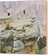 Grand Canyon Photo Op Wood Print