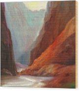 Grand Canyon Rafting Wood Print