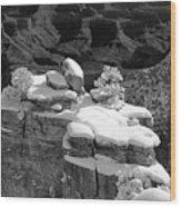 Grand Canyon Snow Black And White Photo Wood Print