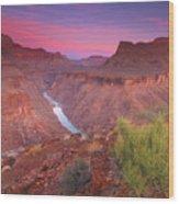 Grand Canyon Sunrise Wood Print by David Kiene