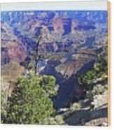 Grand Canyon14 Wood Print