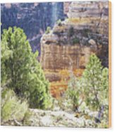 Grand Canyon16 Wood Print