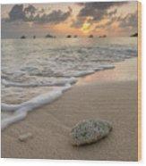 Grand Cayman Beach Coral At Sunset Wood Print