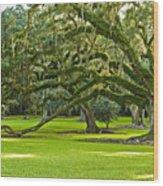 Grand Lady Wood Print