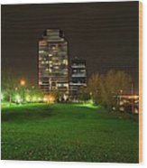 Grand Rapids Mi Under The Lights-5 Wood Print