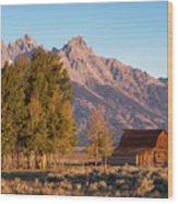 Grand Teton Mountain View Wood Print
