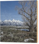 Grand Tetons From Gros Ventre Wood Print