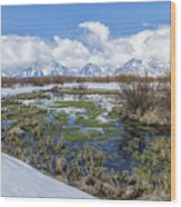 Grand Tetons From Willow Flats In Early April Wood Print